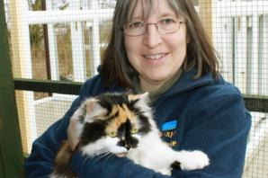 "Yorkshire Cat Rescue looks back on another unwelcome ""record year"""